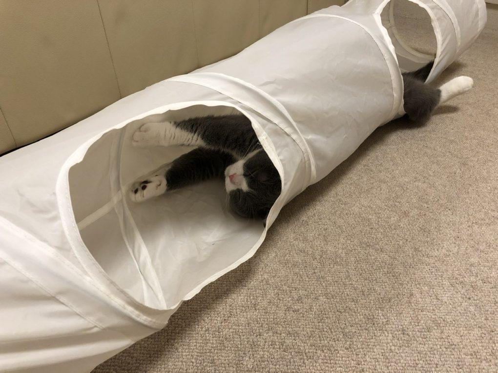 キャットトンネル IKEA