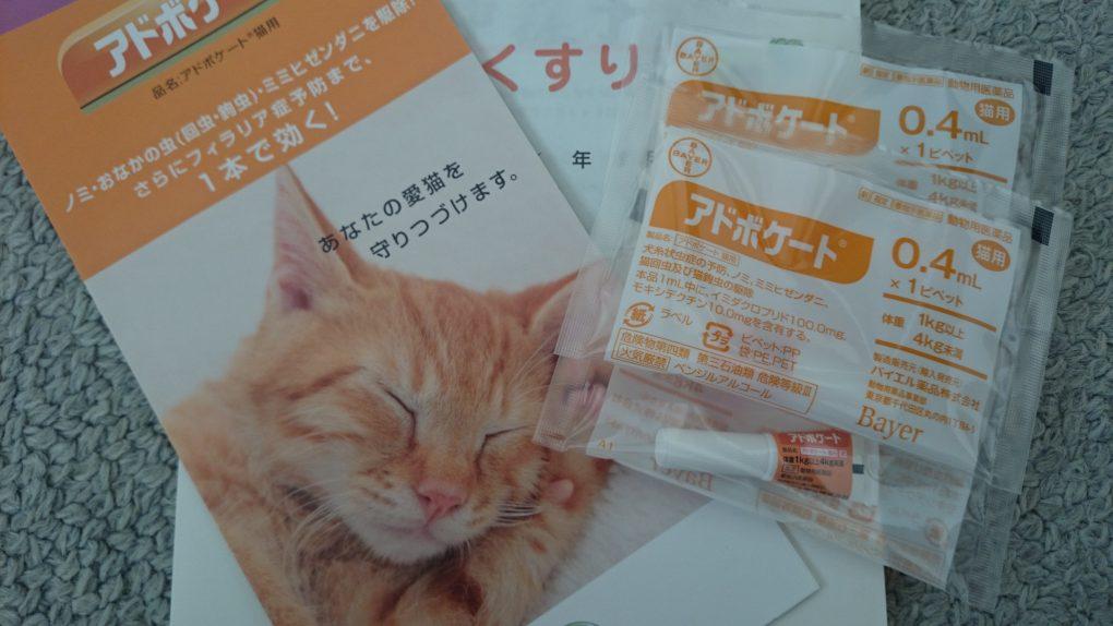 アドボケート(猫用-ノミ・回虫・ダニ・フィラリア)