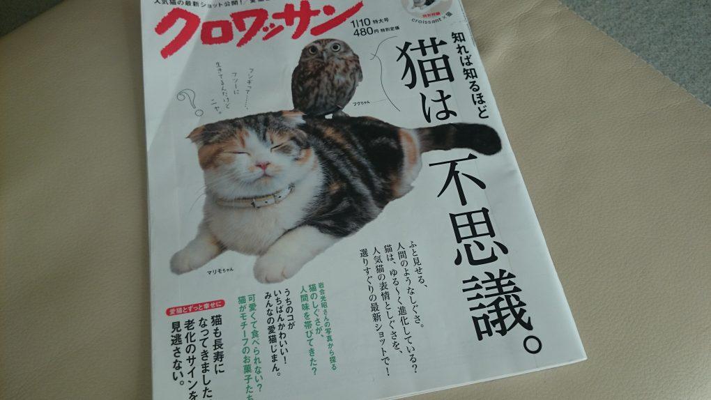マガジンハウス/クロワッサン「猫は不思議」