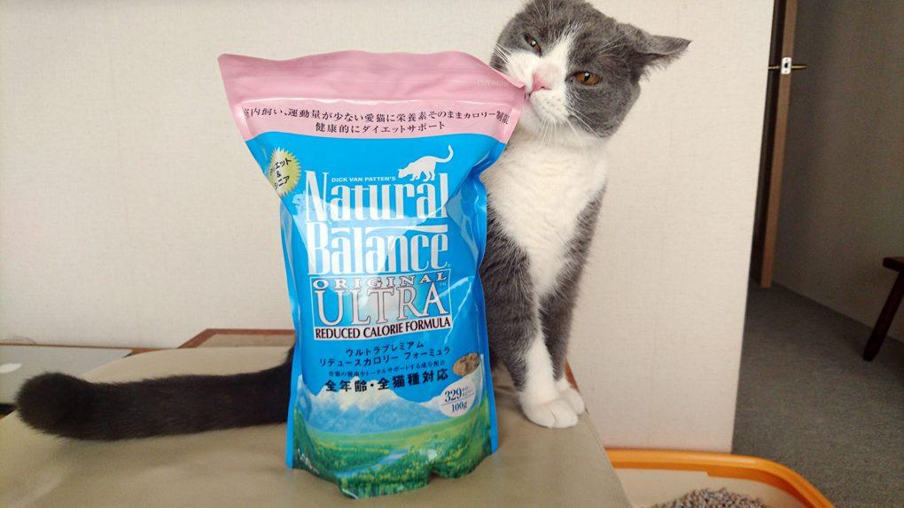 ナチュラルバランス リデュースカロリー 猫