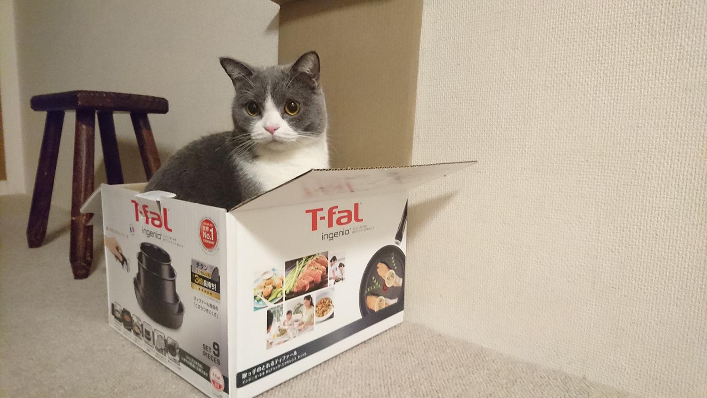 ティファール・インジニオ鍋とフライパンセット黒