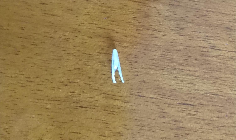 猫爪とぎ 爪の剥がれ方