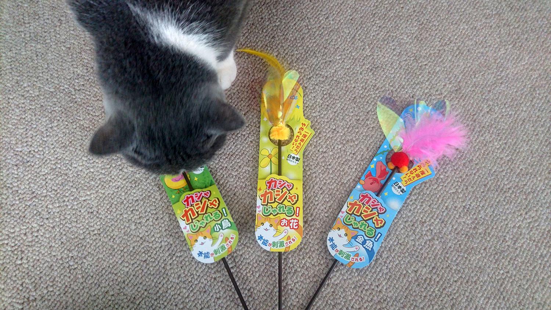 ネコのおもちゃ(猫じゃらし)