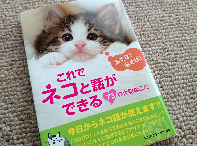 猫と会話が出来る方法