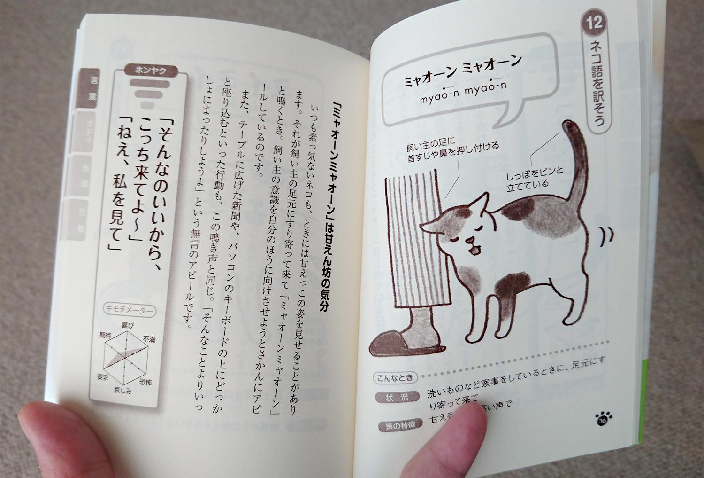 猫と会話(猫語を学ぶ)