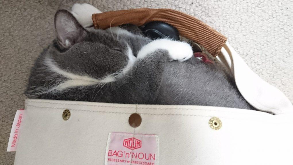 バッグンナウンの肩掛けバッグ
