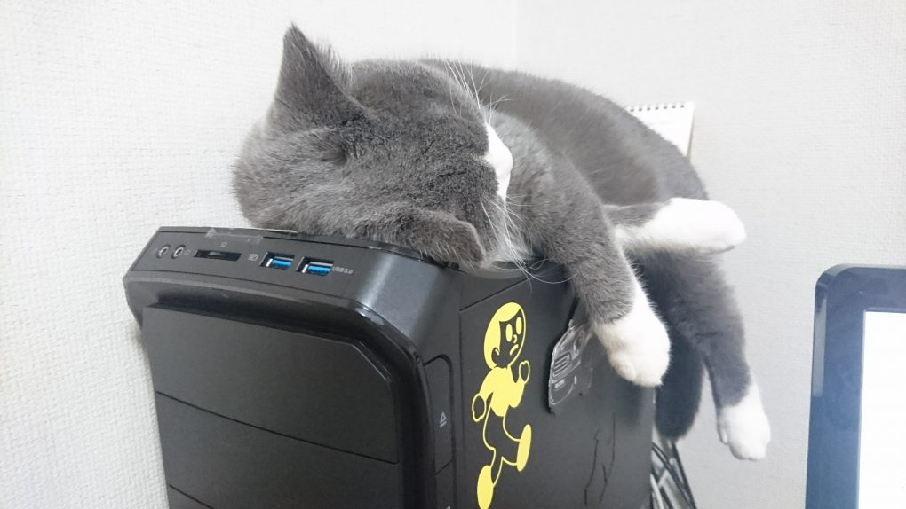 パソコンを強制終了する猫