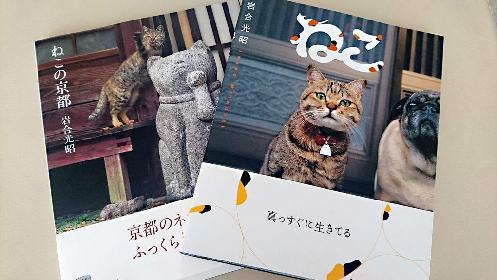 岩合光昭(世界ネコ歩き)NHK写真集「ねこ」