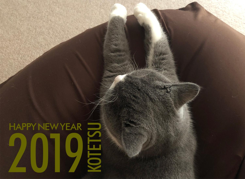 小鉄(猫)年賀状2019年