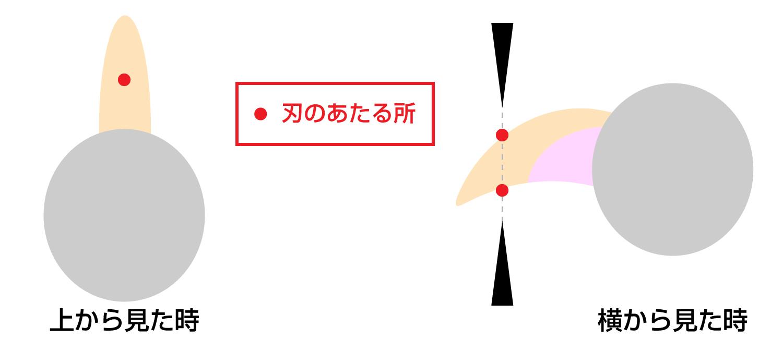 猫の爪切り・刃(ハサミ)の向き